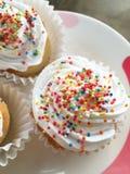 Chiffon cupcake Stock Images