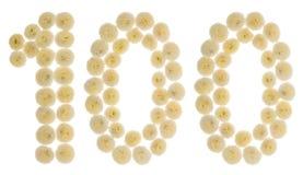 Chiffre arabe 100, cent, des fleurs crèmes du chrysanth Photographie stock libre de droits