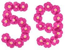 Chiffre arabe 59, cinquante-neuf, des fleurs roses du lin, d'isolement sur le fond blanc illustration libre de droits