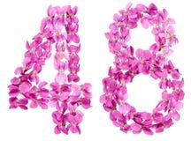 Chiffre arabe 48, quarante-huit, des fleurs d'alto, d'isolement Photo libre de droits