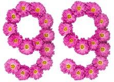 Chiffre arabe 99, quatre-vingt-dix-neuf, des fleurs de chrysanthème, I Photo libre de droits