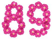Chiffre arabe 89, quatre-vingt-neuf, des fleurs roses du lin, d'isolement sur le fond blanc illustration libre de droits