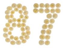 Chiffre arabe 87, quatre-vingt-sept, des fleurs crèmes du chrysanth Photographie stock libre de droits