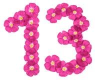 Chiffre arabe 13, treize, des fleurs roses du lin, d'isolement sur le fond blanc illustration libre de droits