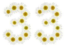 Chiffre arabe 33, trente-trois, des fleurs blanches de la camomille Photos libres de droits