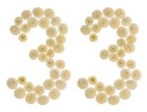 Chiffre arabe 33, trente-trois, des fleurs crèmes du chrysanth Photo stock