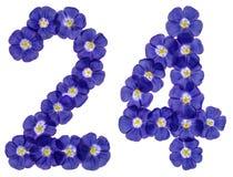 Chiffre arabe 24, vingt-quatre, des fleurs bleues du lin, isola Photo stock