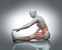 chiffre 3D médical en étirant la pose Image libre de droits