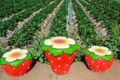 Chiffre de fraise et jardin de rangée Photo libre de droits