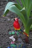 Chiffre de jardin de perroquet Image libre de droits