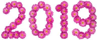 Chiffre 2019 de la fleur du chrysanthème, d'isolement sur le CCB blanc Photo stock