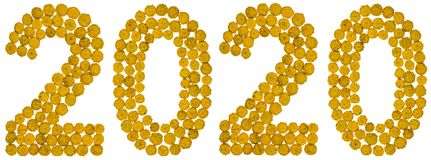 Chiffre 2020 de la fleur jaune du tansy, d'isolement sur le dos de blanc Images stock