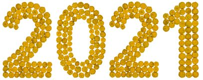 Chiffre 2021 de la fleur jaune du tansy, d'isolement sur le dos de blanc Photos libres de droits