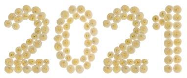 Chiffre 2021 des fleurs crèmes du chrysanthème, d'isolement sur le wh Images libres de droits
