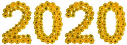Chiffre 2020 des fleurs jaunes de la renoncule, d'isolement sur le blanc Photographie stock libre de droits