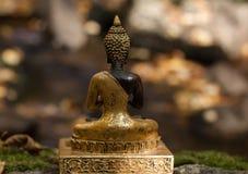 Chiffre dos de Bouddha dans une forêt Images stock