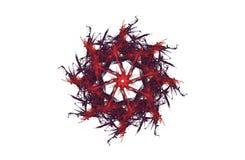 Chiffre noir rouge de fractale agressive abstraite illustration de vecteur