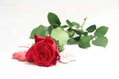Chiffres de Rose et de coeurs Images libres de droits