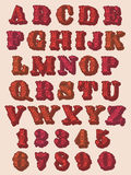Chiffres et lettres floraux décoratifs d'alphabet Photos stock