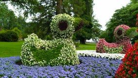 Chiffres floraux des canards sur l'île de Mainau en Allemagne Image stock
