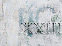 Chiffres romains vingt-trois sur le blanc et le vert Images libres de droits