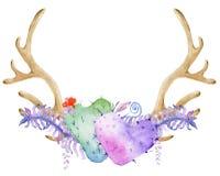 Chifre da aquarela com planta carnuda Imagens de Stock Royalty Free