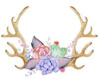 Chifre da aquarela com planta carnuda, cacto, e folhas Foto de Stock Royalty Free