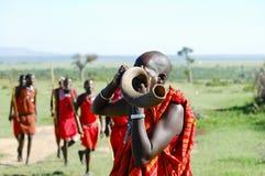 Chifre de Kudu do Masai que funde - Kenya fotografia de stock royalty free