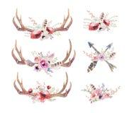 Chifres boêmios dos cervos da aquarela Mamíferos ocidentais Quadril do Watercolour Imagens de Stock Royalty Free
