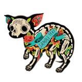 Chihuahua de Colorfull Imagen de archivo libre de regalías