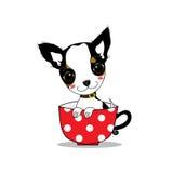 Chihuahua do sorriso ilustração do vetor