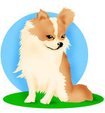 Chihuahua dog. Dog illustration royalty free illustration
