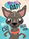 Chihuahua dog cartoon illustration. Funny chihuahua dog cartoon illustration stock illustration
