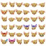 Chihuahua Dog Emoji Emoticon Expression Royalty Free Stock Photo
