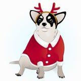 Chihuahua is gekleed als een hert Royalty-vrije Stock Afbeelding