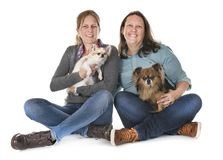 Chihuahua i kobiety zdjęcia royalty free