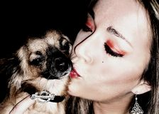 Chihuahua Love Royalty Free Stock Photography