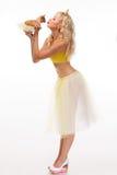 Chihuahua na menina alegre das mãos mulher feliz elegante com bonito Imagens de Stock Royalty Free