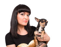 Chihuahua Pet And Brunette Female Isolated Stock Images