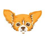 Chihuahua pies - wektorowa ilustracja Obrazy Royalty Free