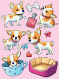 Chihuahua Puppy. Cartoon illustration of cute cheerful Chihuahua puppy Royalty Free Stock Image