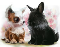 Chihuahua puppy and black rabbit. Watercolor painting Stock Photos
