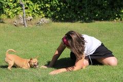 Chihuahua que juega con una muchacha en el jardín Imagenes de archivo