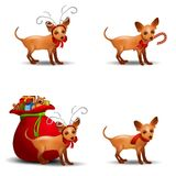 Chihuahua Reindeer. An illustration featuring a small chihuahua wearing antlers and without - in various poses with different items Royalty Free Stock Photo