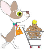 Chihuahua Shopping Royalty Free Stock Images