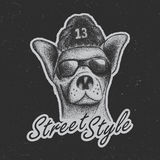 Chihuahua Street Style Poster Stock Image
