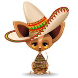 Chihuahua Tiny Puppy Dog Cartoon from Mexico. Adorable Tiny Chihuahua Puppy Dog, Dressed with a Mexican Poncho and a big Sombrero, and with Lazy and naughty Stock Photos