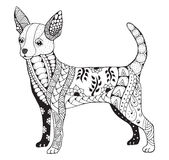 Chihuahua zentangle stylized, vector, illustration, freehand  Royalty Free Stock Photos