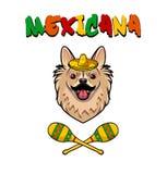 Chihuahuahund med sombreron och maracas Mexicana text också vektor för coreldrawillustration stock illustrationer