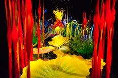 Chihuly庭院和玻璃,西雅图,华盛顿州,美国 库存图片